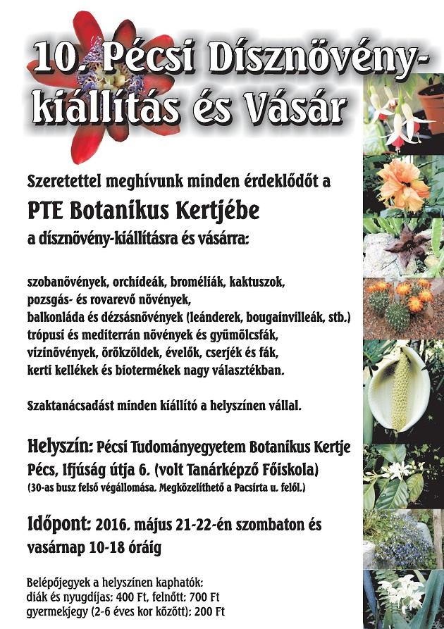 10-pecsi-disznoveny-kiallitas-es-vasar630-1463518311.jpg