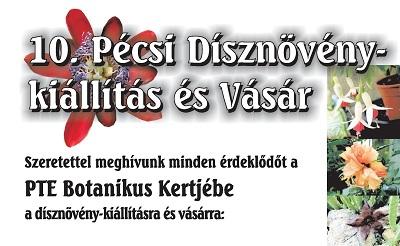 10-pecsi-disznoveny-kiallitas-es-vasar400-1463518587.jpg