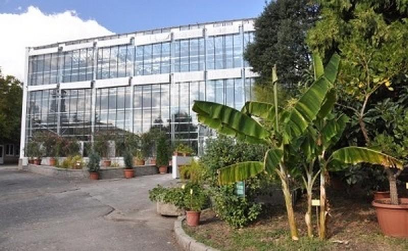 botanikus-kert-uveghaz400-1400966386.jpg