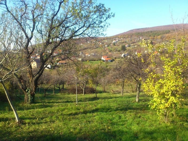 JAKABHEGYRE NÉZŐ PANORÁMÁS, 2400nm-es zárt kert