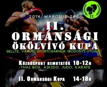 ii-ormansagi-kupa-okolvivas-1395723235.jpg