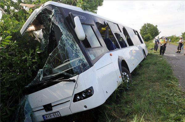 busz-az-arokban600-1434998171.jpg
