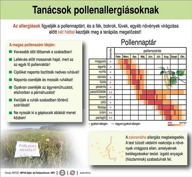 pollentanacsok-naptar-mti-1405779014.jpg